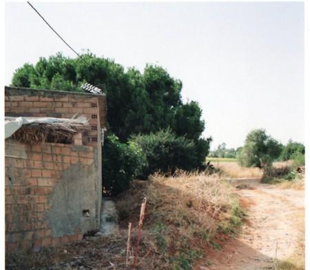 Zona donde, según los ecologistas, se ha producido la usurpación.
