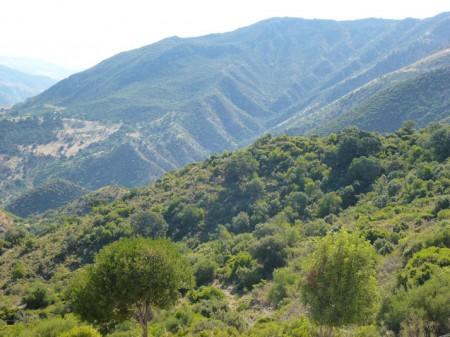 Monte Prieto.