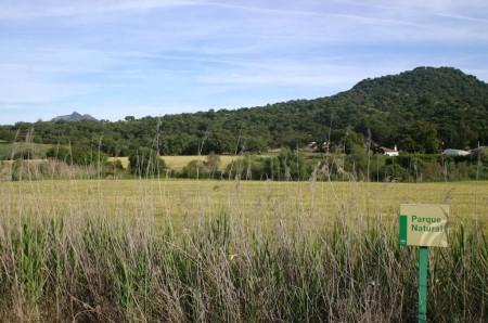 Zona del Parque Natural Los Alcornocales que se pretendía recalificar.