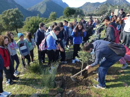 Plantación de encinas en Monte Prieto por un grupo de alumnos del IES Santo Domingo de El Puerto de Santa María.
