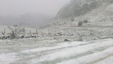 Nieve a las afueras de Villaluenga del Rosario (Foto: Ayuntamiento).