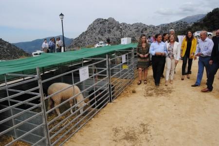 La Feria Ganaera, del 9 al 12 de octubre.