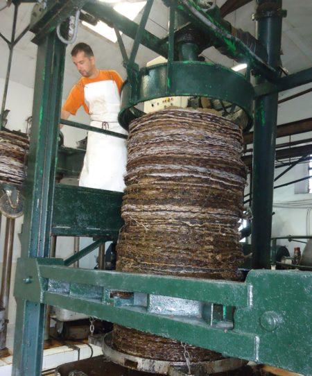Proceso de elaboración de aceite.
