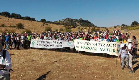Pancartas de los participantes en la marcha.