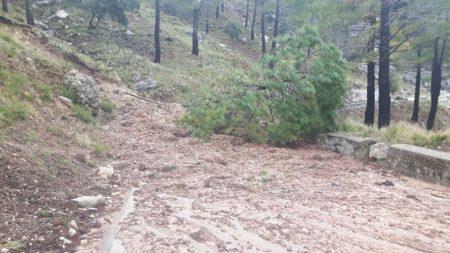 Carretera cortada por desprendimientos.