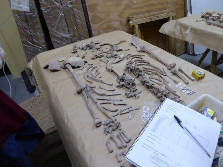 Estudio de los restos de víctimas a cargo del antropólogo físico Juan Manuel Guijo Mauri.