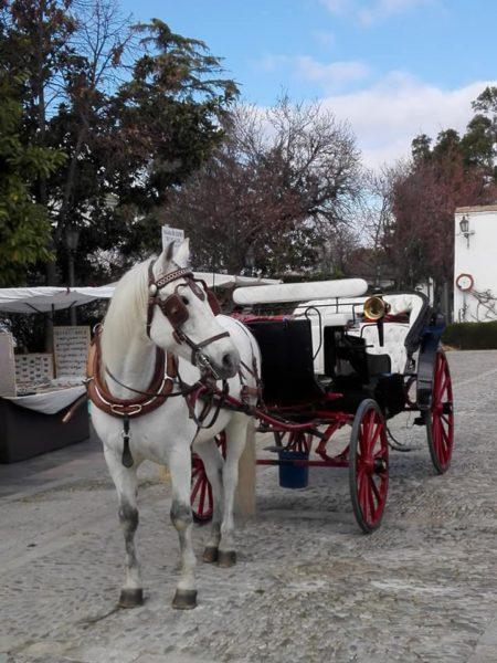 He experimentado nuevas perspectivas al atravesar en coche de caballos el Puente Nuevo.