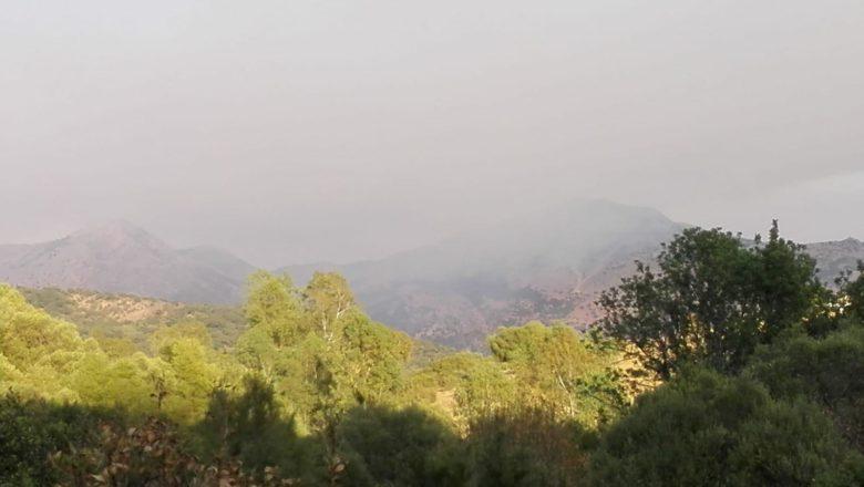 Reflexiones ante el incendio en Sierra Bermeja